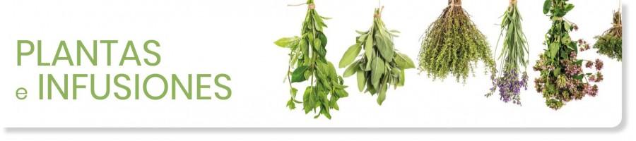 Todas las plantas en sus distintos formatos, nuestra gama de fitoterapia es muy extensa