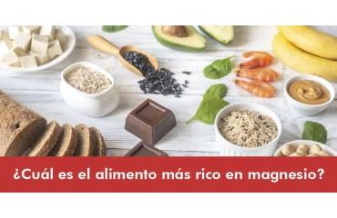 ¿Cuál es el alimento más rico en magnesio?