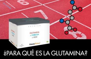 ¿Para qué es la glutamina?