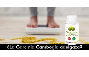 ¿La Garcinia Cambogia adelgaza?